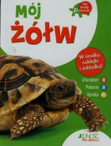 Mój żółw